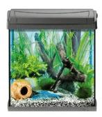 Aquarium zu Weihnachten verschenken - Eine Nahaufnahme von einem Aquarium - Tetra AquaArt 215221 Aquarienschrank 20/30 Liter Weiß