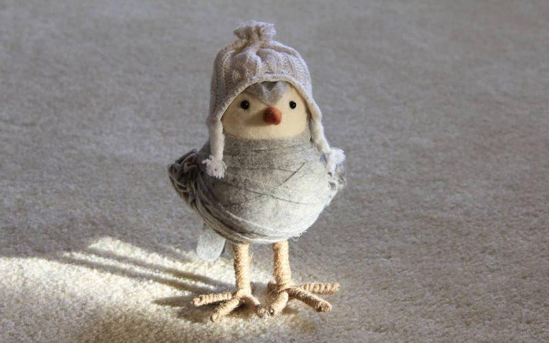 Kreative Weihnachtsgeschenke für die Liebsten - Ein kleines Tier - Vogel